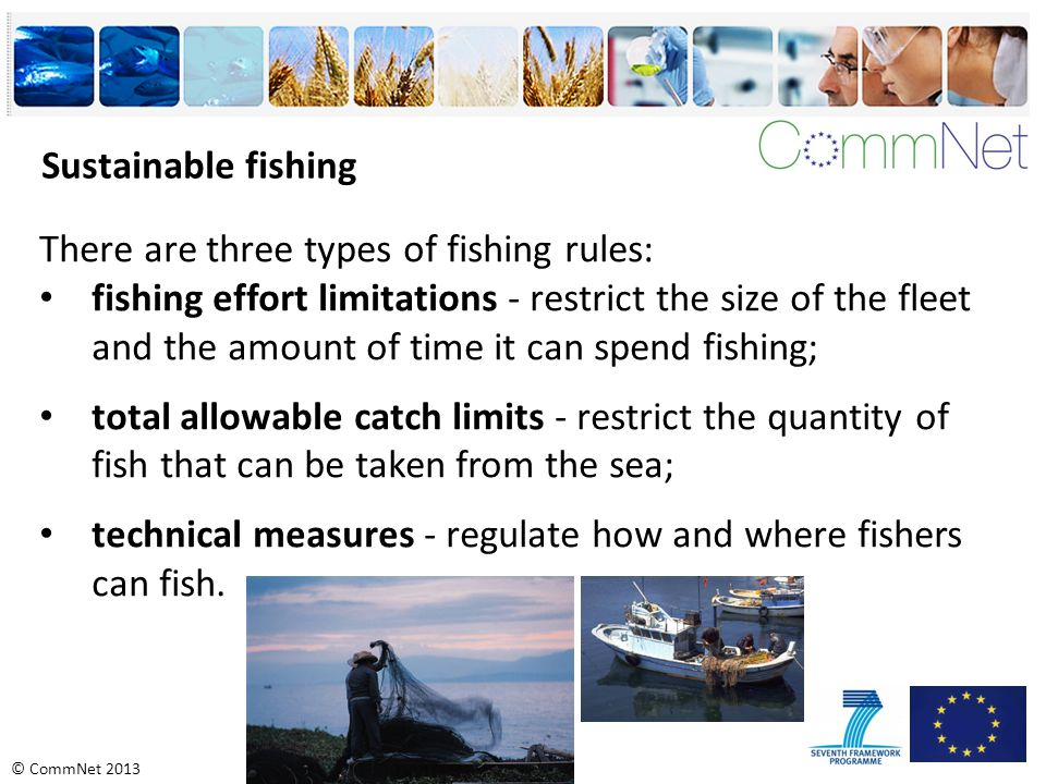 © CommNet 2013 Sustainable fishing There are three types of fishing rules: fishing effort limitations - restrict the size of the fleet and the amount of time it can spend fishing; total allowable catch limits - restrict the quantity of fish that can be taken from the sea; technical measures - regulate how and where fishers can fish.