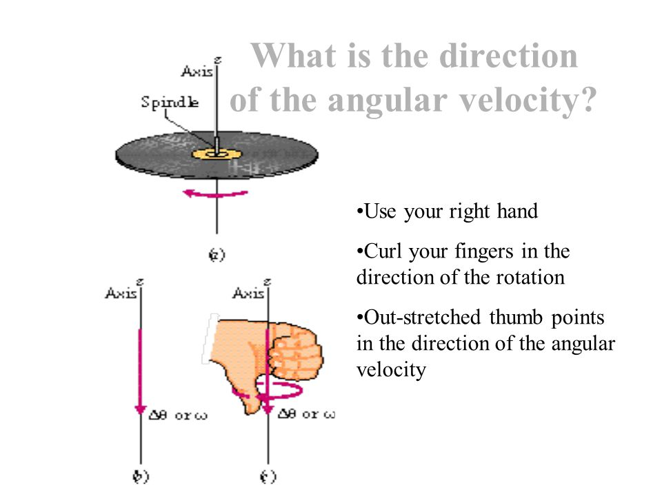 Use your right hand Curl your fingers in the direction of the rotation Out-stretched thumb points in the direction of the angular velocity What is the direction of the angular velocity