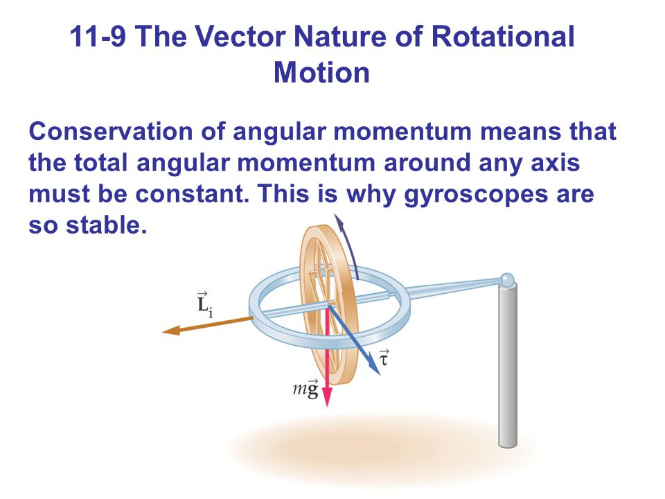 11-9 The Vector Nature of Rotational Motion Conservation of angular momentum means that the total angular momentum around any axis must be constant.