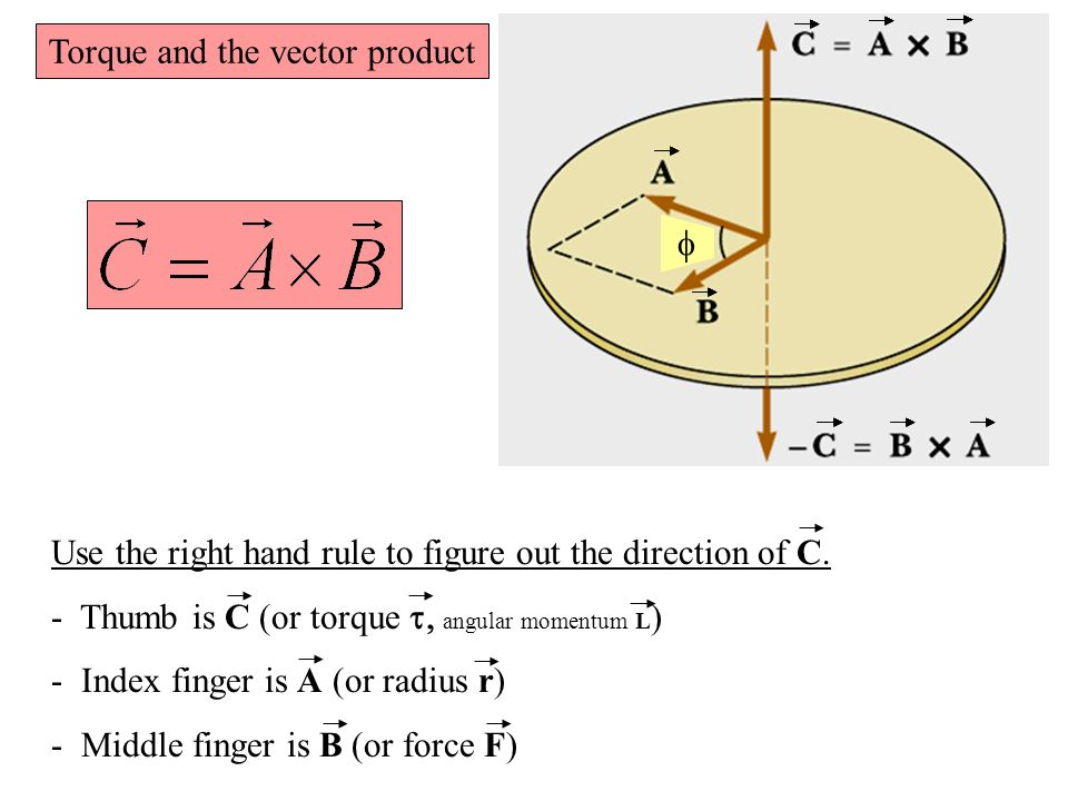 Torque and the vector product Use the right hand rule to figure out the direction of C.