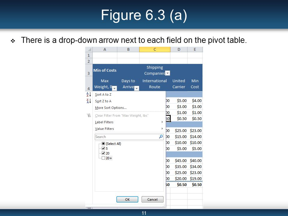 11 Figure 6.3 (a)  There is a drop-down arrow next to each field on the pivot table.