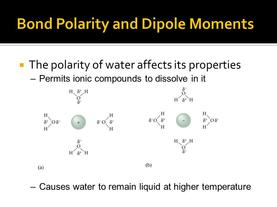 the polarity of water In this lesson plan, students will explore the concept of molecular polarity students will watch a video lesson, discuss new information, and.