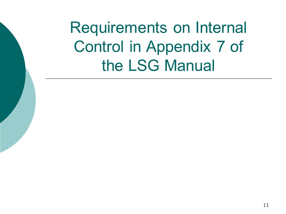 11 Requirements on Internal Control in Appendix 7 of the LSG Manual