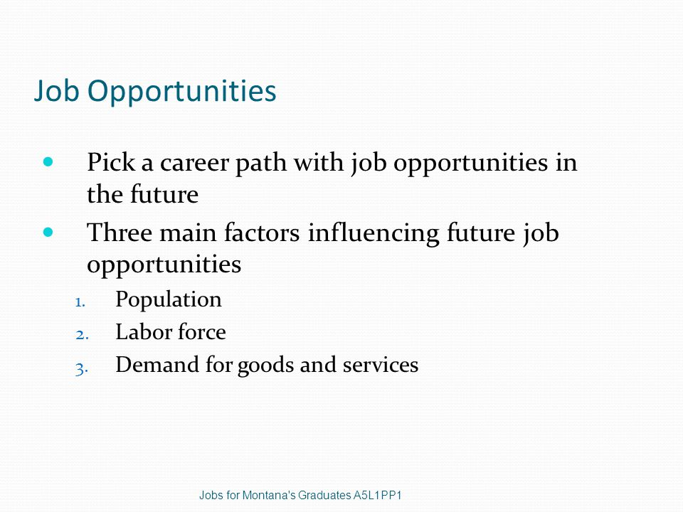 Job Opportunities Pick a career path with job opportunities in the future Three main factors influencing future job opportunities 1.