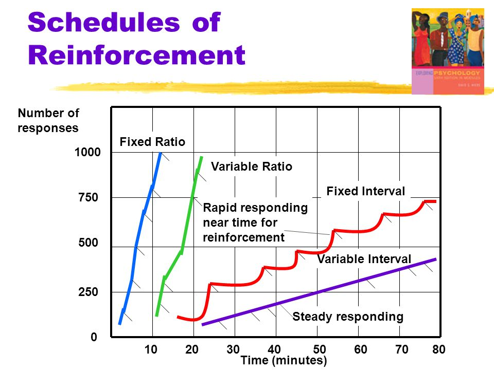 Schedules of Reinforcement Variable Interval Number of responses Time (minutes) Fixed Ratio Variable Ratio Fixed Interval Steady responding Rapid responding near time for reinforcement 80