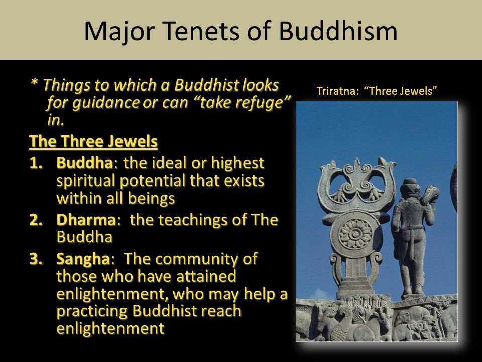 * Things to which a Buddhist looks for guidance or can take refuge in.