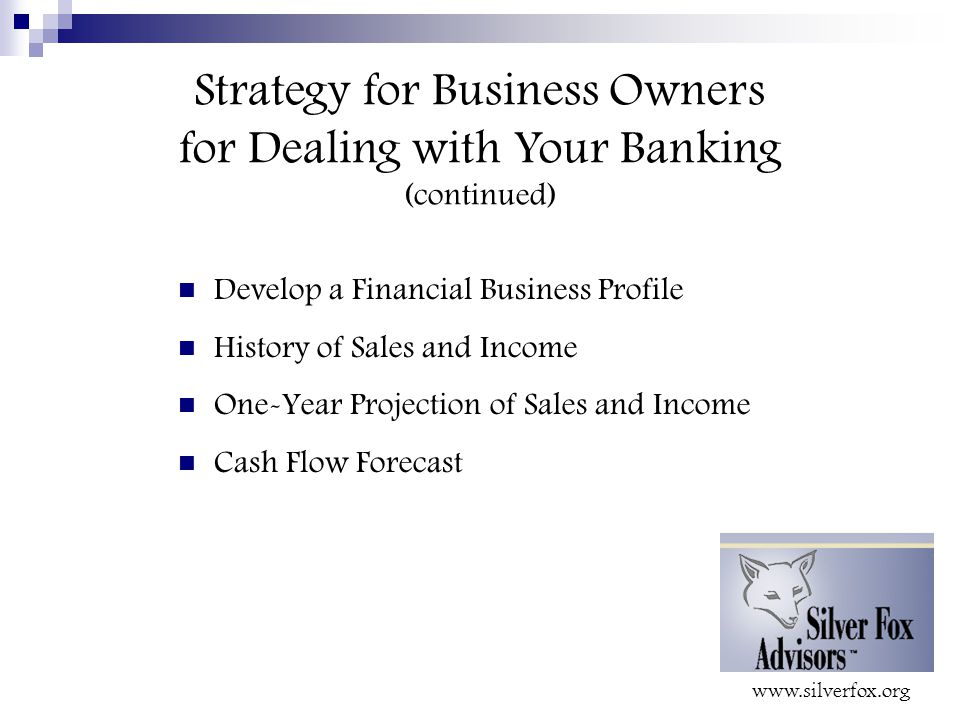 Strategy for Business Owners for Dealing with Your Banking (continued) Develop a Financial Business Profile History of Sales and Income One-Year Projection of Sales and Income Cash Flow Forecast