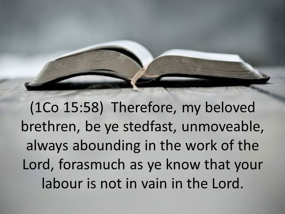 (1Co 15:58) Therefore, my beloved brethren, be ye stedfast, unmoveable, always abounding in the work of the Lord, forasmuch as ye know that your labour is not in vain in the Lord.