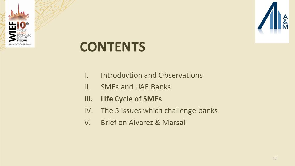 13 CONTENTS I.Introduction and Observations II.SMEs and UAE Banks III.Life Cycle of SMEs IV.The 5 issues which challenge banks V.Brief on Alvarez & Marsal