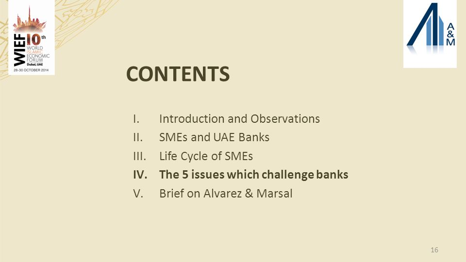16 CONTENTS I.Introduction and Observations II.SMEs and UAE Banks III.Life Cycle of SMEs IV.The 5 issues which challenge banks V.Brief on Alvarez & Marsal
