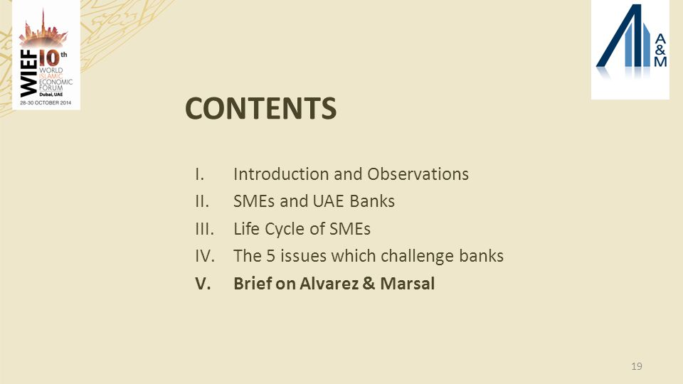 19 CONTENTS I.Introduction and Observations II.SMEs and UAE Banks III.Life Cycle of SMEs IV.The 5 issues which challenge banks V.Brief on Alvarez & Marsal
