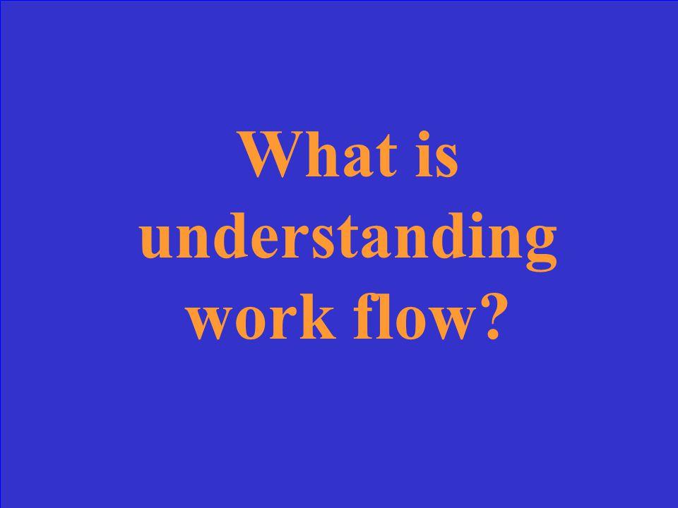 What is understanding work flow?