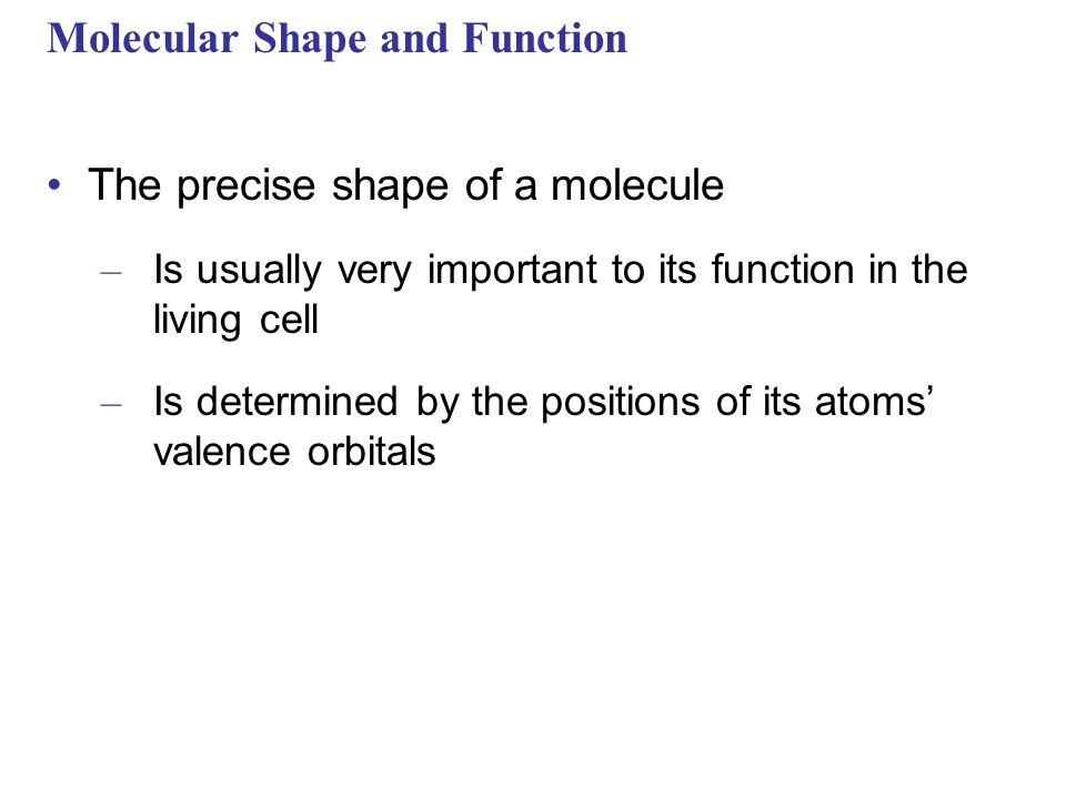 Molecular Shape and Function The precise shape of a molecule – Is usually very important to its function in the living cell – Is determined by the positions of its atoms' valence orbitals