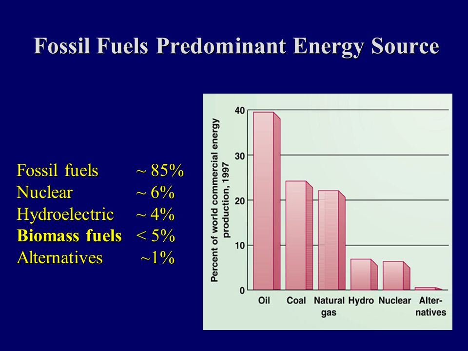 Fossil Fuels Predominant Energy Source Fossil fuels ~ 85% Nuclear ~ 6% Hydroelectric ~ 4% Biomass fuels< 5% Alternatives ~1%