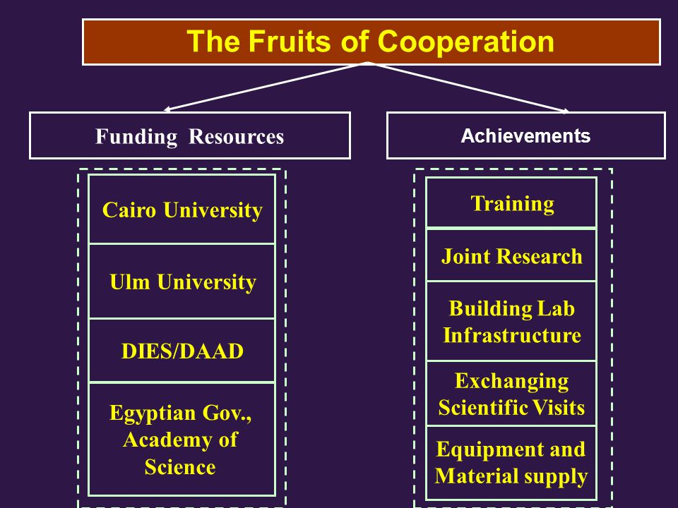 The Fruits of Cooperation Achievements Training Joint Research Building Lab Infrastructure Equipment and Material supply Cairo University Ulm University DIES/DAAD Egyptian Gov., Academy of Science Funding Resources Exchanging Scientific Visits
