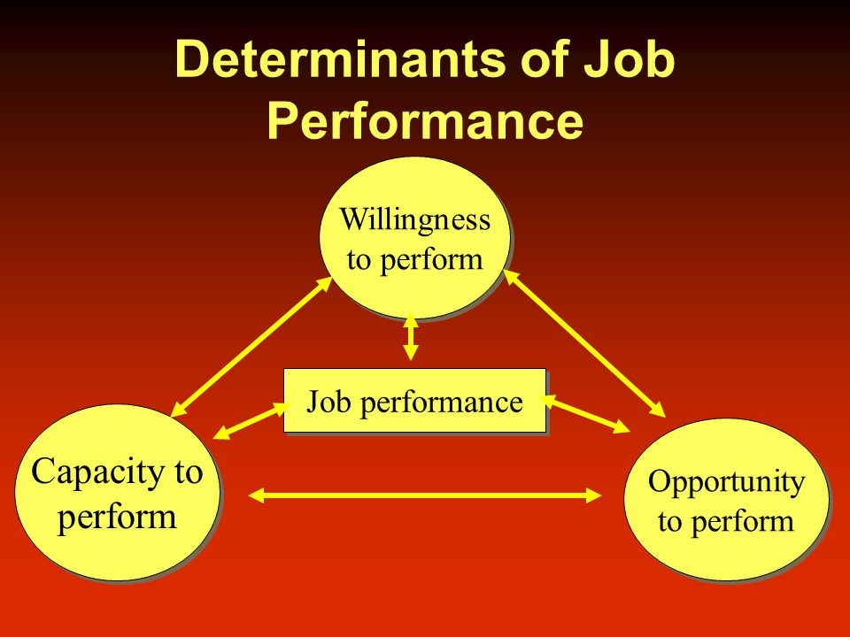 Determinants of Job Performance Capacity to perform Capacity to perform Opportunity to perform Opportunity to perform Willingness to perform Willingness to perform Job performance