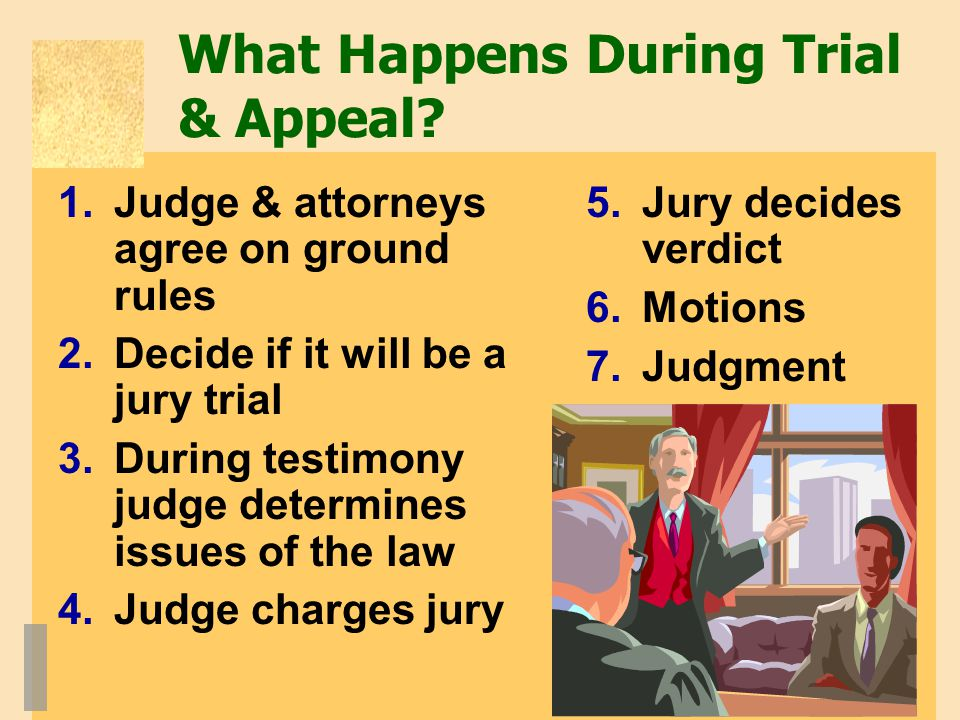 What Happens During Trial & Appeal.