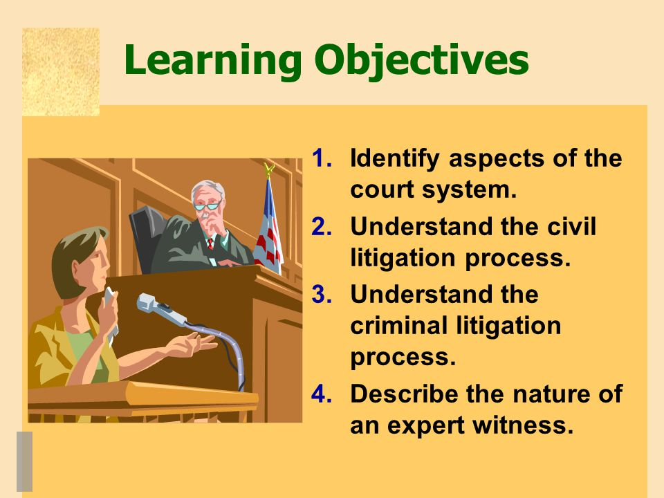 Learning Objectives 1.Identify aspects of the court system.