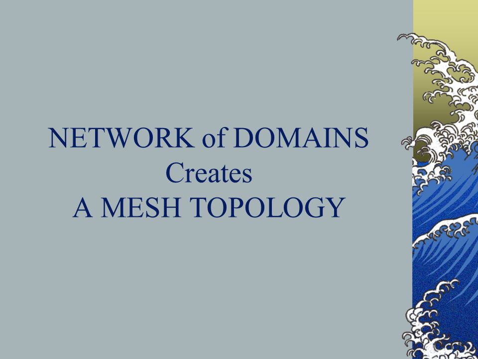 NETWORK of DOMAINS Creates A MESH TOPOLOGY