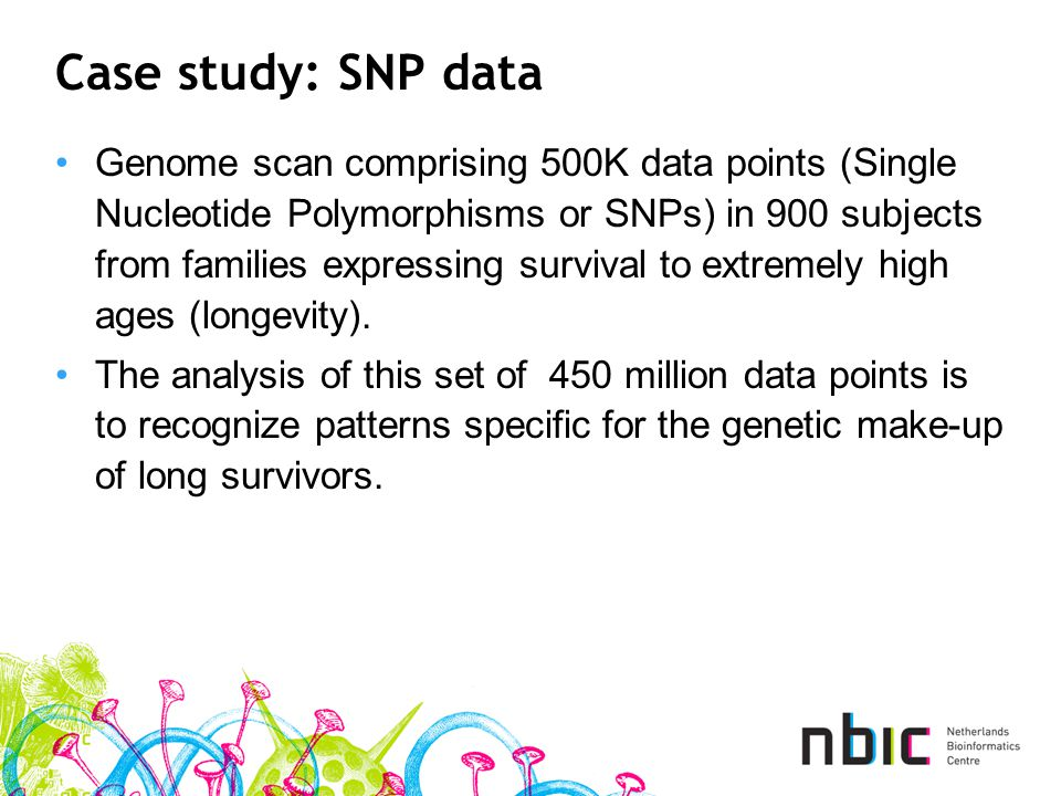 Case study: SNP data Genome scan comprising 500K data points (Single Nucleotide Polymorphisms or SNPs) in 900 subjects from families expressing survival to extremely high ages (longevity).