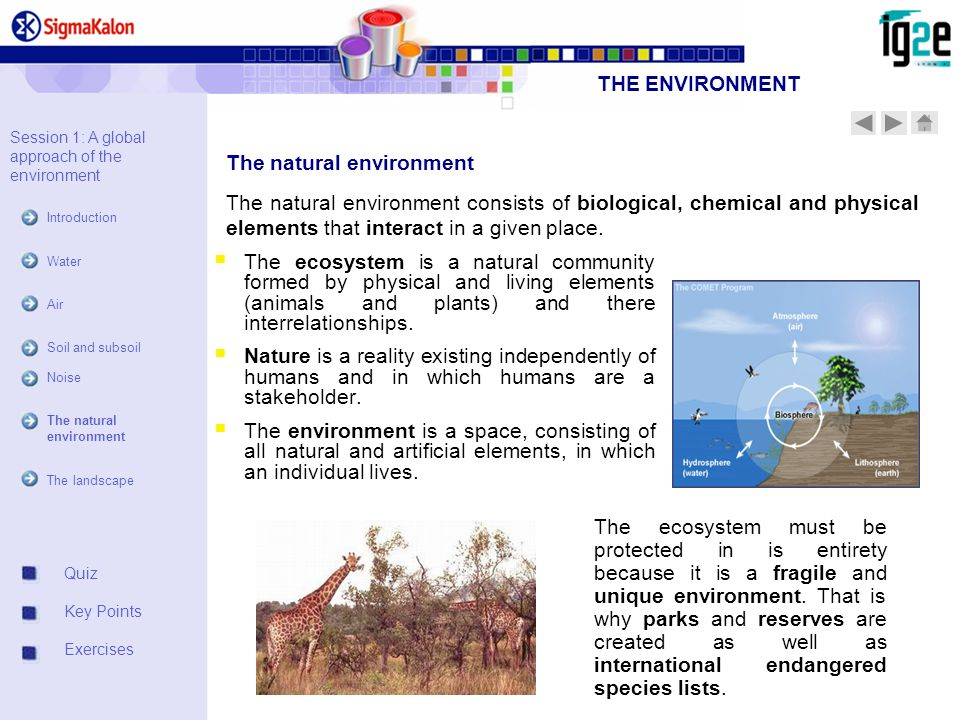 Quiz Key Points Exercises The natural environment Session 1: A global approach of the environment Introduction Water Air Soil and subsoil Noise The natural environment The landscape The natural environment consists of biological, chemical and physical elements that interact in a given place.