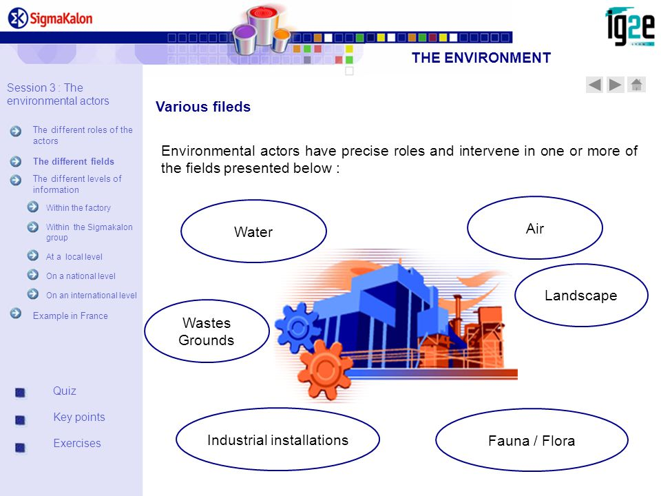 Industrial installations Fauna / Flora Environmental actors have precise roles and intervene in one or more of the fields presented below : Air Water Landscape Wastes Grounds Various fileds Quiz Key points Exercises THE ENVIRONMENT Session 3 : The environmental actors The different roles of the actors The different fields The different levels of information Within the factory Within the Sigmakalon group At a local level On a national level On an international level Example in France