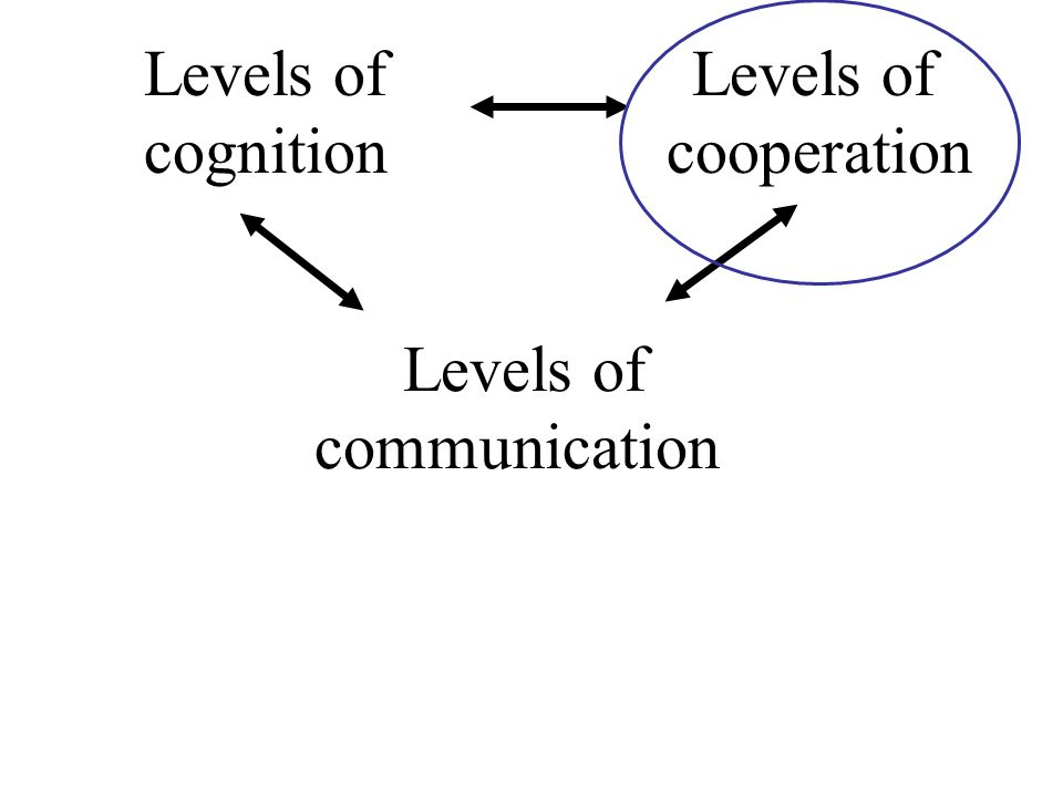 Levels of Levels of cognition cooperation Levels of communication