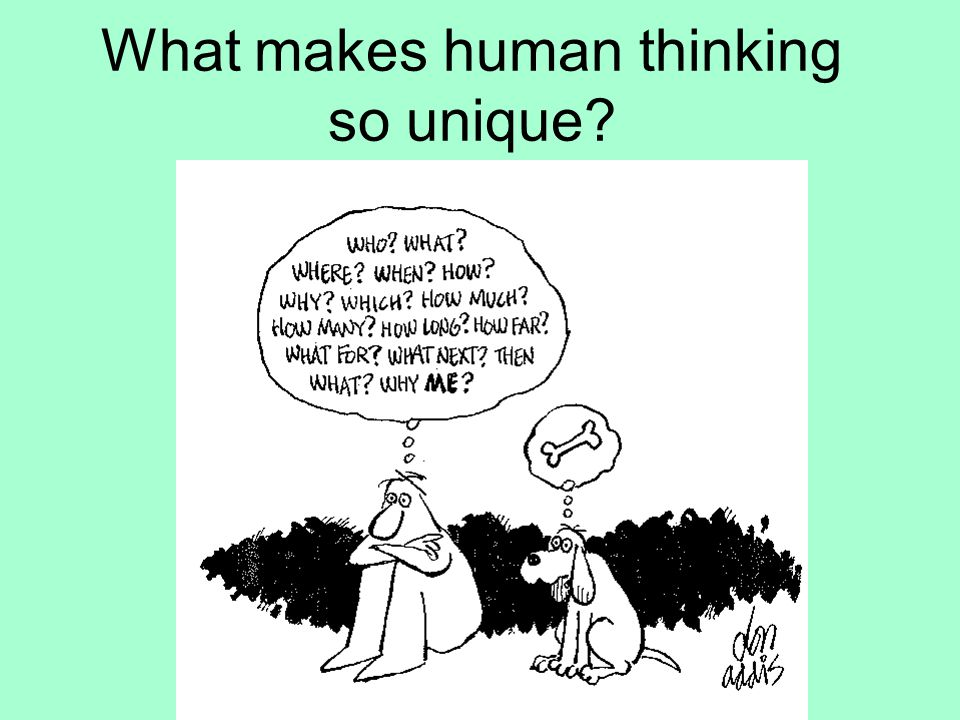 What makes human thinking so unique