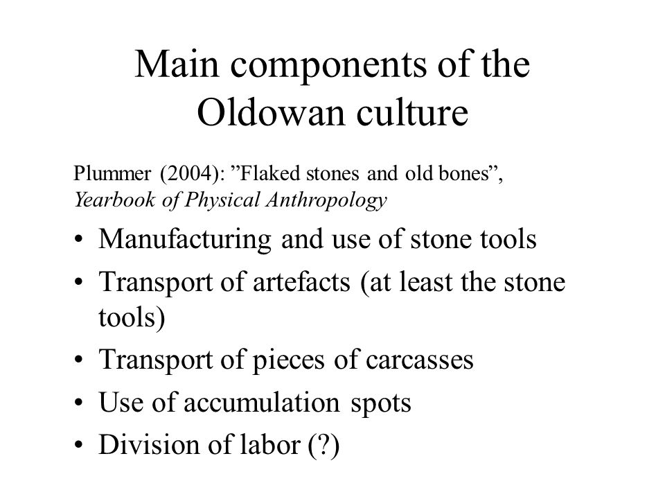 Main components of the Oldowan culture Manufacturing and use of stone tools Transport of artefacts (at least the stone tools) Transport of pieces of carcasses Use of accumulation spots Division of labor ( ) Plummer (2004): Flaked stones and old bones , Yearbook of Physical Anthropology
