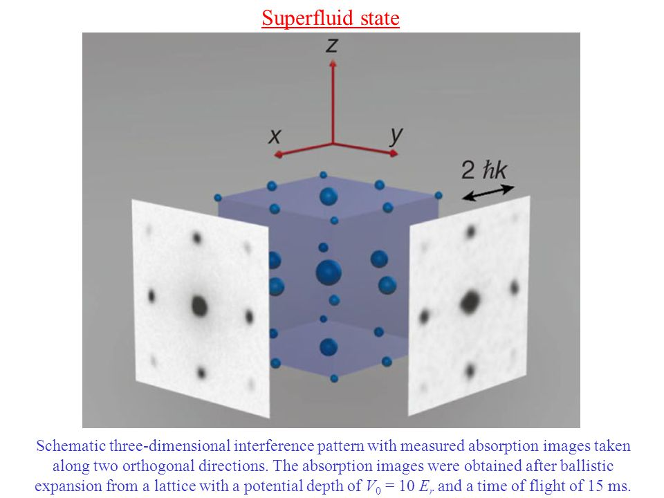 Schematic three-dimensional interference pattern with measured absorption images taken along two orthogonal directions.