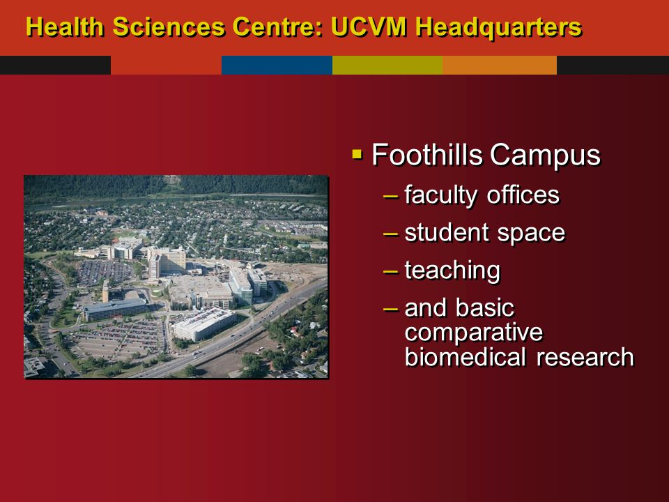 Health Sciences Centre: UCVM Headquarters  Foothills Campus –faculty offices –student space –teaching –and basic comparative biomedical research