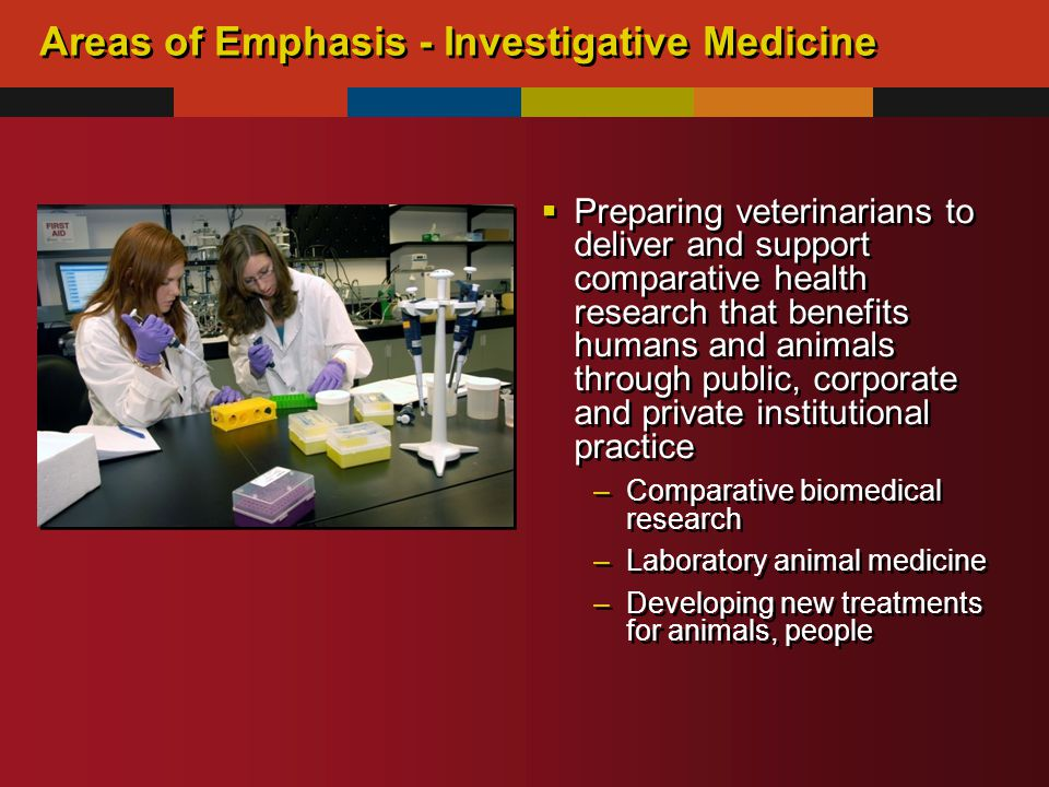 Areas of Emphasis - Investigative Medicine  Preparing veterinarians to deliver and support comparative health research that benefits humans and animals through public, corporate and private institutional practice –Comparative biomedical research –Laboratory animal medicine –Developing new treatments for animals, people