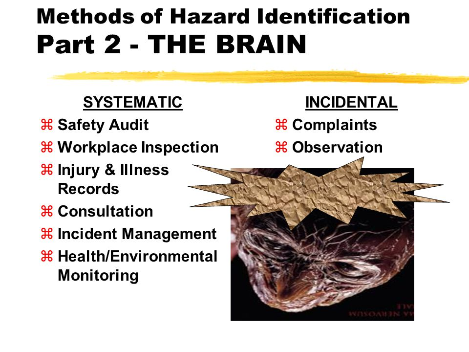 Methods of Hazard Identification Part 2 - THE BRAIN SYSTEMATIC zSafety Audit zWorkplace Inspection zInjury & Illness Records zConsultation zIncident Management zHealth/Environmental Monitoring INCIDENTAL zComplaints zObservation
