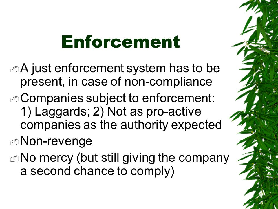 Enforcement  A just enforcement system has to be present, in case of non-compliance  Companies subject to enforcement: 1) Laggards; 2) Not as pro-active companies as the authority expected  Non-revenge  No mercy (but still giving the company a second chance to comply)