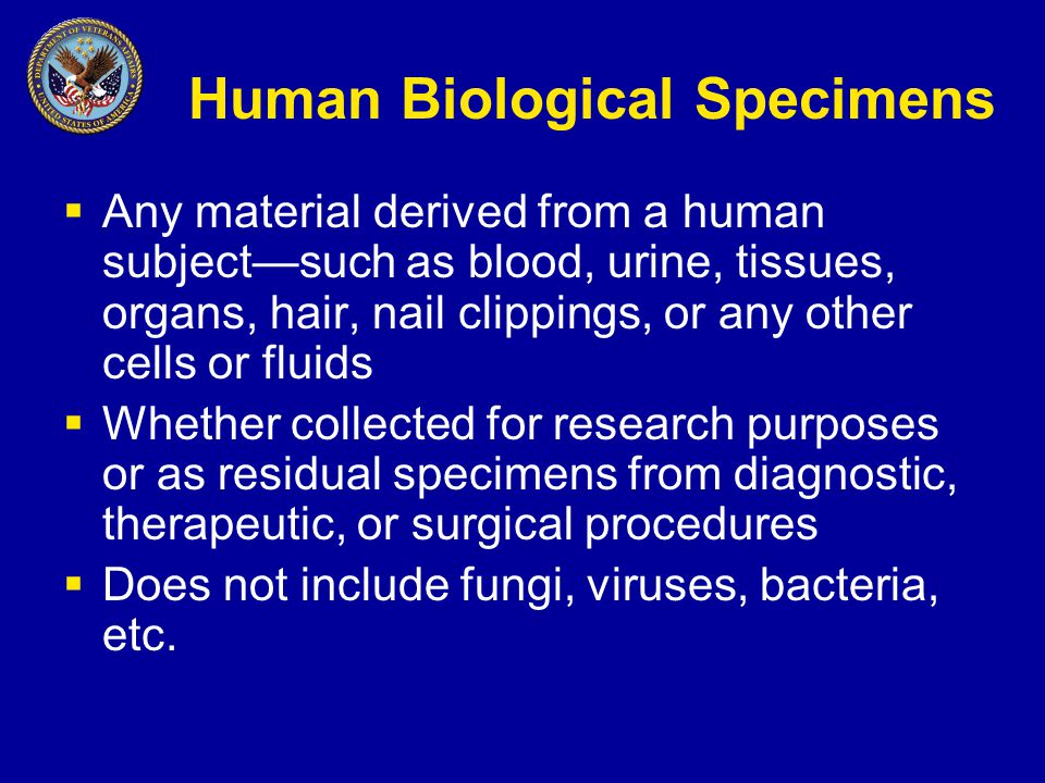 Human Biological Specimens  Any material derived from a human subject—such as blood, urine, tissues, organs, hair, nail clippings, or any other cells or fluids  Whether collected for research purposes or as residual specimens from diagnostic, therapeutic, or surgical procedures  Does not include fungi, viruses, bacteria, etc.