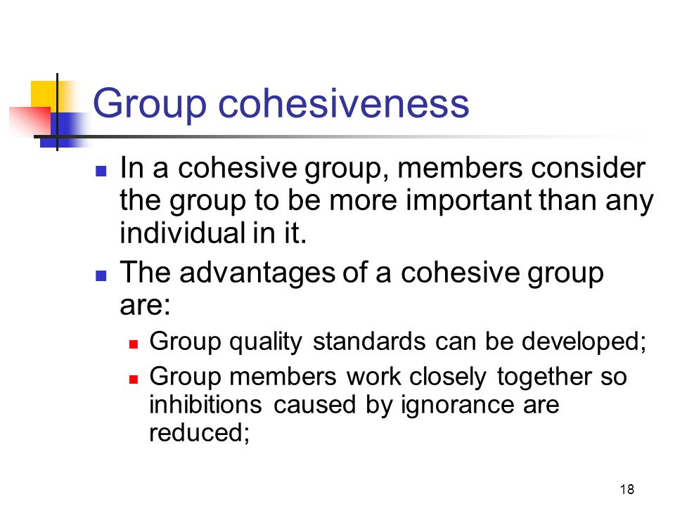 18 Group cohesiveness In a cohesive group, members consider the group to be more important than any individual in it.