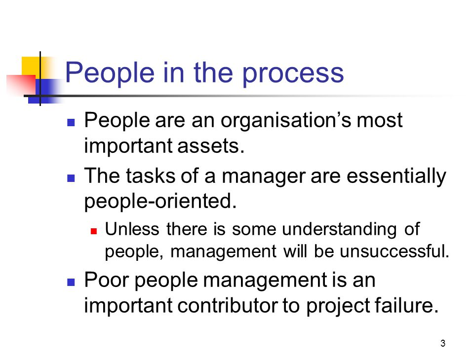 3 People in the process People are an organisation's most important assets.