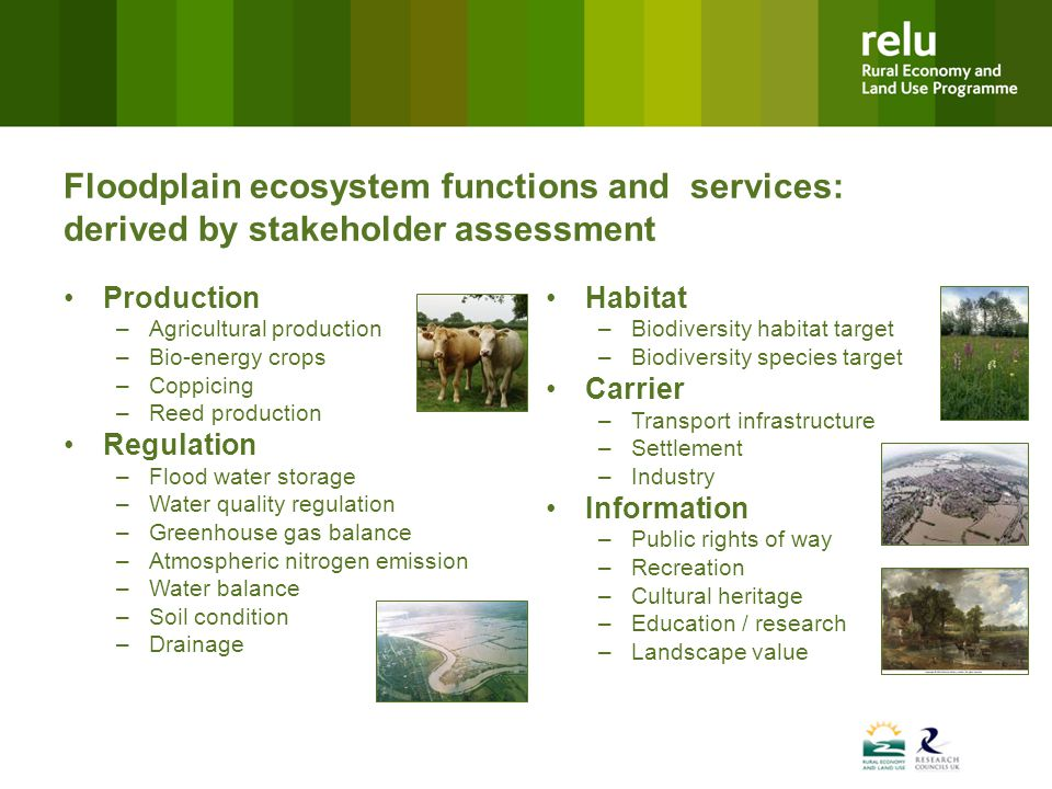 Floodplain ecosystem functions and services: derived by stakeholder assessment Production –Agricultural production –Bio-energy crops –Coppicing –Reed production Regulation –Flood water storage –Water quality regulation –Greenhouse gas balance –Atmospheric nitrogen emission –Water balance –Soil condition –Drainage Habitat –Biodiversity habitat target –Biodiversity species target Carrier –Transport infrastructure –Settlement –Industry Information –Public rights of way –Recreation –Cultural heritage –Education / research –Landscape value