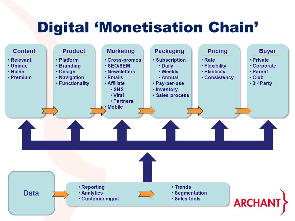 Digital 'Monetisation Chain' Content Relevant Unique Niche Premium Product Platform Branding Design Navigation Functionality Marketing Cross-promos SEO/SEM Newsletters  s Affiliate SNS Viral Partners Mobile PackagingPricingBuyer Private Corporate Parent Club 3 rd Party Rate Flexibility Elasticity Consistency Subscription Daily Weekly Annual Pay-per-use Inventory Sales process Reporting Analytics Customer mgmt Trends Segmentation Sales tools Data