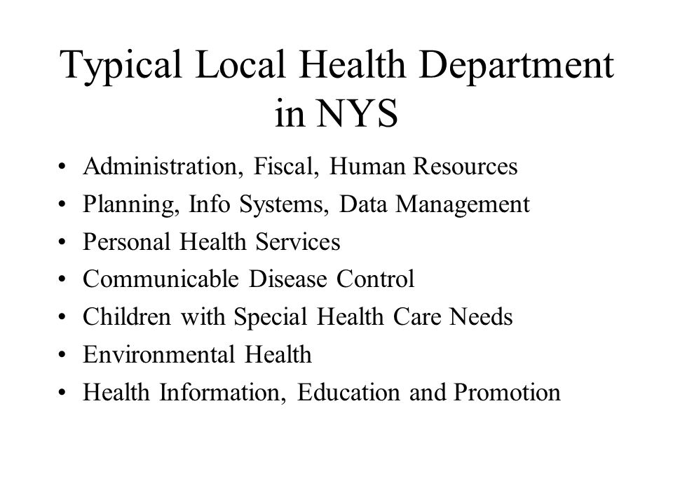 Typical Local Health Department in NYS Administration, Fiscal, Human Resources Planning, Info Systems, Data Management Personal Health Services Communicable Disease Control Children with Special Health Care Needs Environmental Health Health Information, Education and Promotion