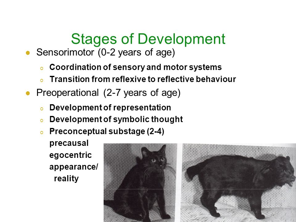 Stages of Development Sensorimotor (0-2 years of age) o Coordination of sensory and motor systems o Transition from reflexive to reflective behaviour Preoperational (2-7 years of age) o Development of representation o Development of symbolic thought o Preconceptual substage (2-4) precausal egocentric appearance/ reality