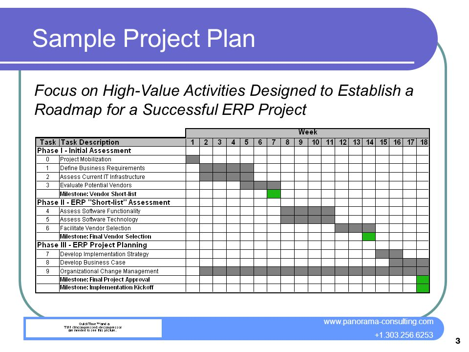 3 panorama consulting group llc wwwpanorama consultingcom 13032566253 3 sample project plan focus on high value activities designed to establish a - Sample Project Plan