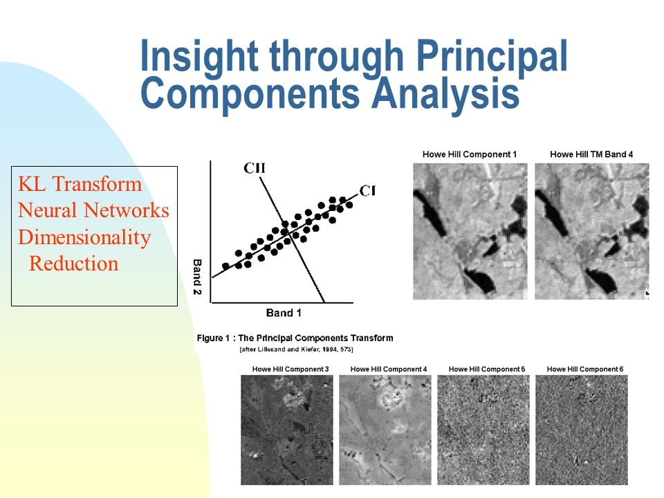 Insight through Principal Components Analysis KL Transform Neural Networks Dimensionality Reduction
