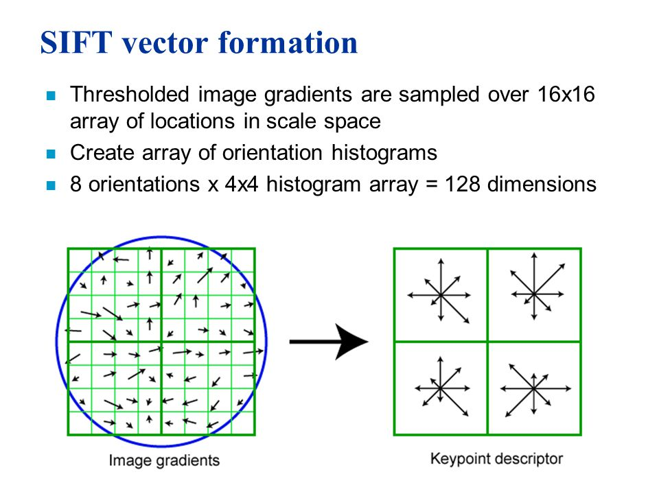SIFT vector formation n Thresholded image gradients are sampled over 16x16 array of locations in scale space n Create array of orientation histograms n 8 orientations x 4x4 histogram array = 128 dimensions