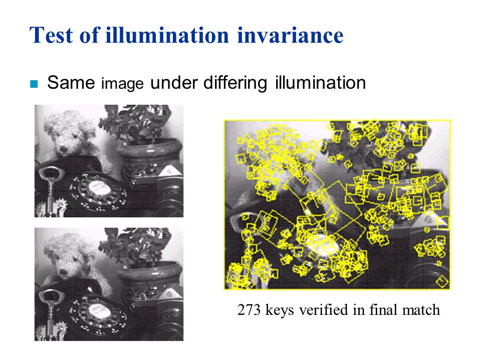 Test of illumination invariance n Same image under differing illumination 273 keys verified in final match