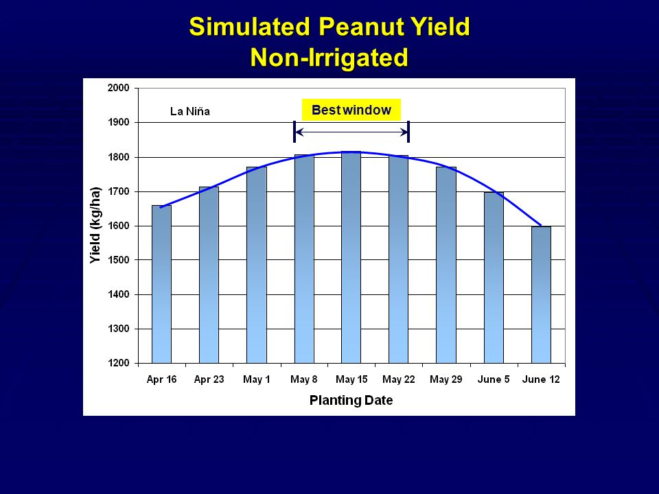 Best window Simulated Peanut Yield Non-Irrigated