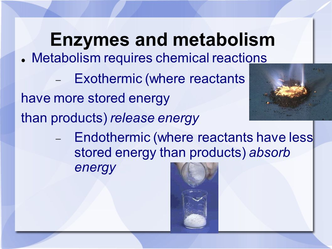 Enzymes and metabolism Metabolism requires chemical reactions  Exothermic (where reactants have more stored energy than products) release energy  Endothermic (where reactants have less stored energy than products) absorb energy