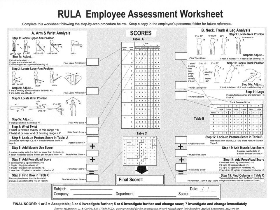 Rapid Upper Limb Assessment (RULA) INSY 3021 Spring ppt download