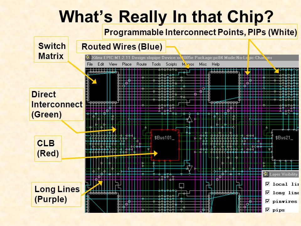 What's Really In that Chip.