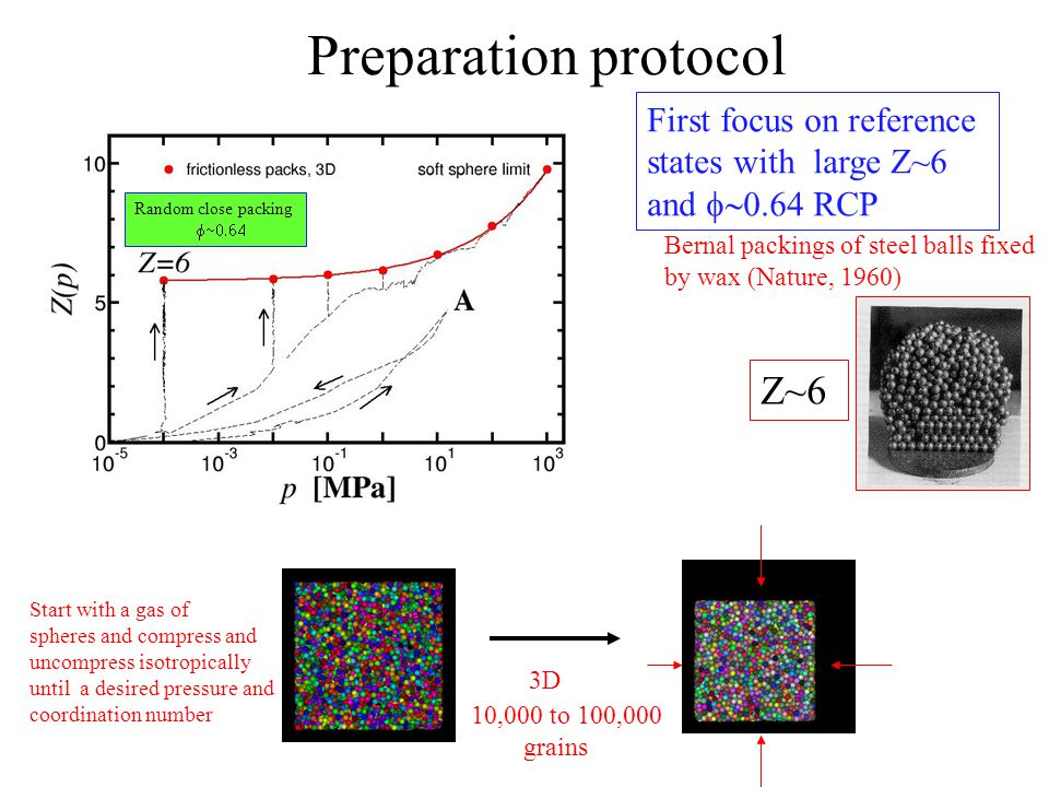 Preparation protocol Start with a gas of spheres and compress and uncompress isotropically until a desired pressure and coordination number 3D 10,000 to 100,000 grains Bernal packings of steel balls fixed by wax (Nature, 1960) Z~6 First focus on reference states with large Z~6 and  RCP Random close packing 